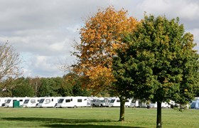 Autumn Trees and Caravans